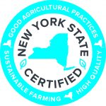 nys_certified-seal-blue